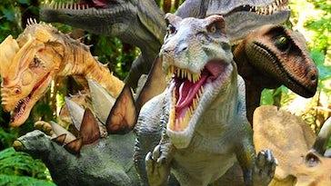 Combe Martin Wildlife & Dinosaur Park