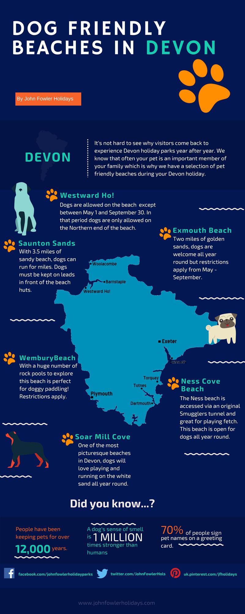 Dog friendly beaches in Devon | JFH Infographic