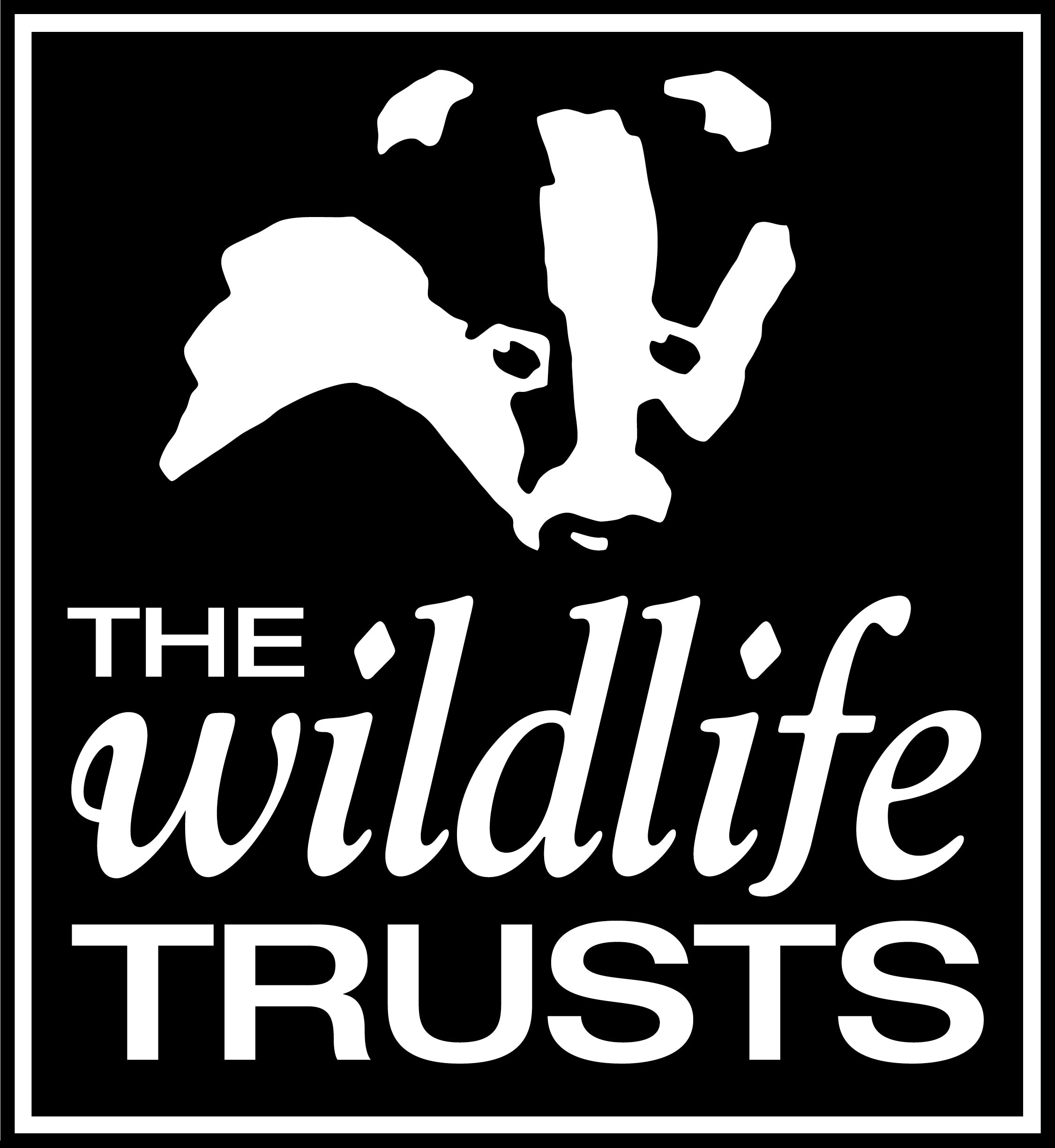 Stay At Home Devon Wildlife Trust Competition